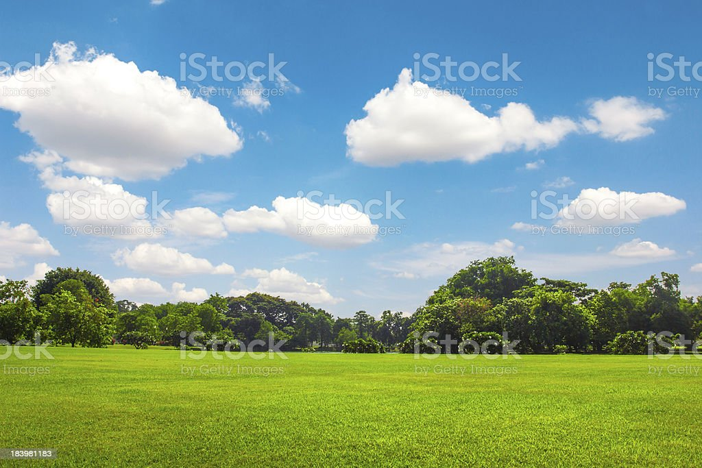 Green park outdoor with blue sky cloud stock photo