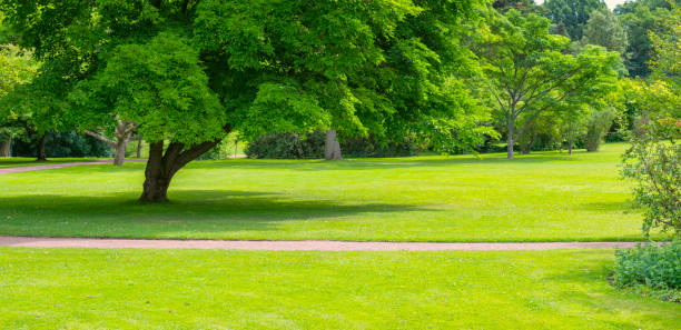 Green Park panorama stock photo