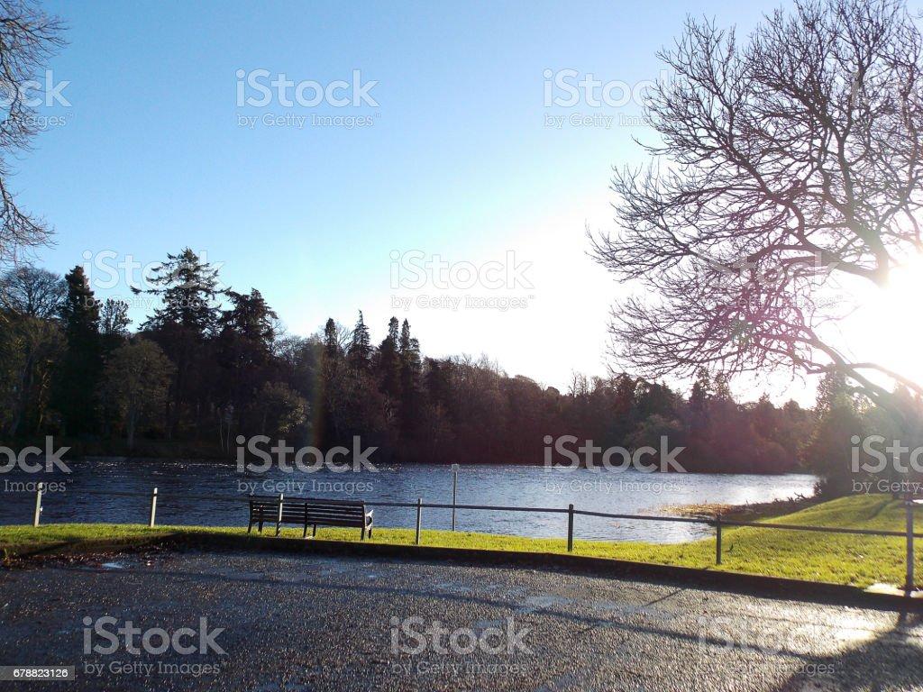 Green park, park bench and footpath photo libre de droits