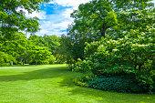 Green summer park in Gothenburg, Sweden. (ProPhoto RGB)