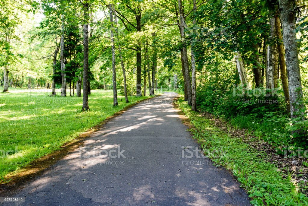 green park with walkways stock photo