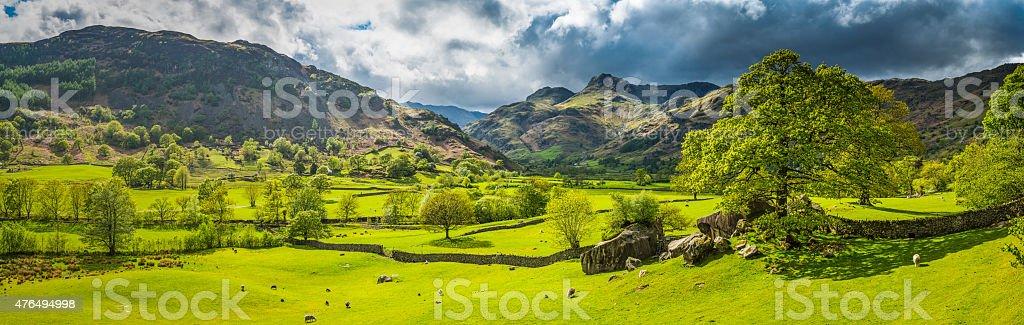 Green pasture idyllic mountain valley panorama Langdale Lake District Cumbria stock photo