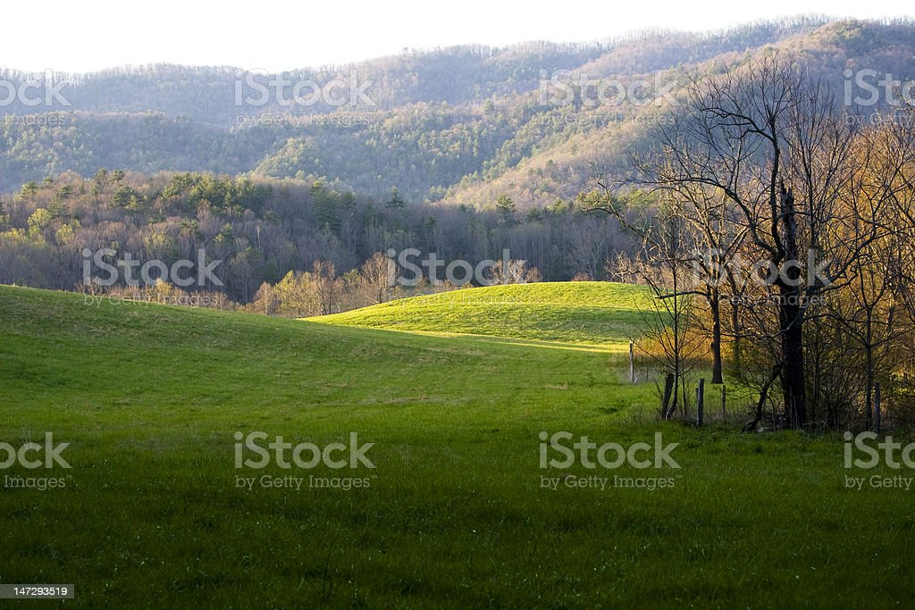Green pasture with mountains royalty-free stock photo