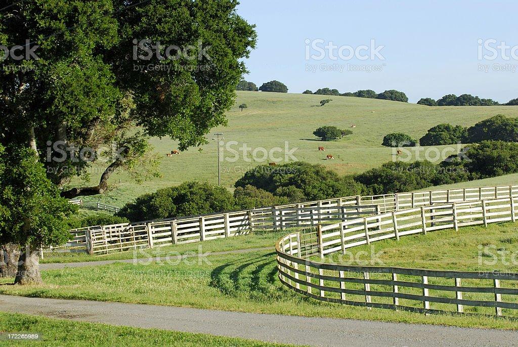 Green Pastures royalty-free stock photo