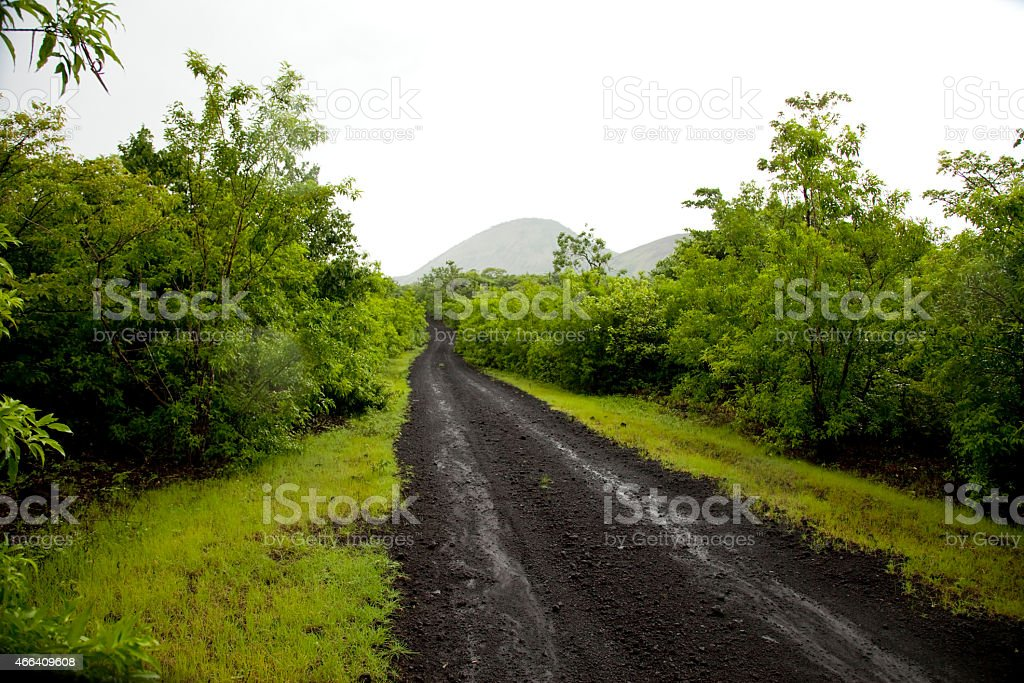 green path stock photo