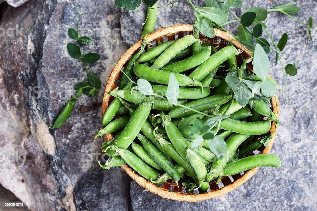 Green peas on a large rock Lizenzfreies stock-foto