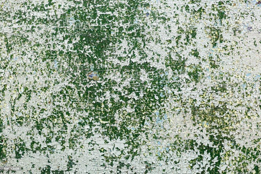 Green peeling paint foto stock royalty-free
