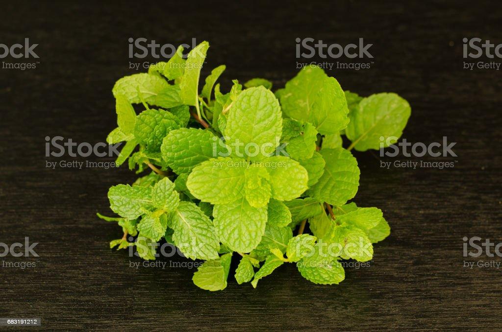 Green peppermint leaves on black background 免版稅 stock photo