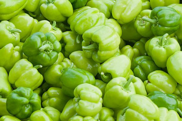 grüne paprika - grüne paprikaschoten stock-fotos und bilder