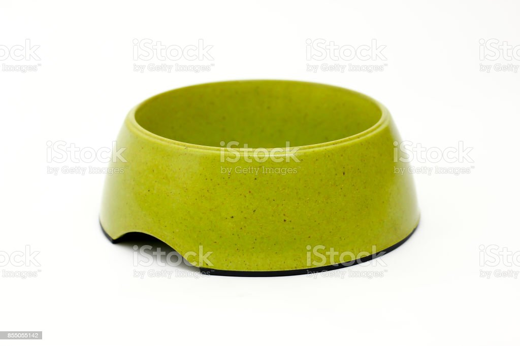 Green pet bowl on white background stock photo