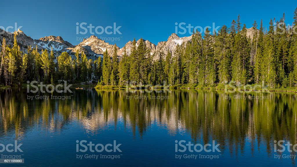 Green Pine trees reflection in a high mountian lake stock photo