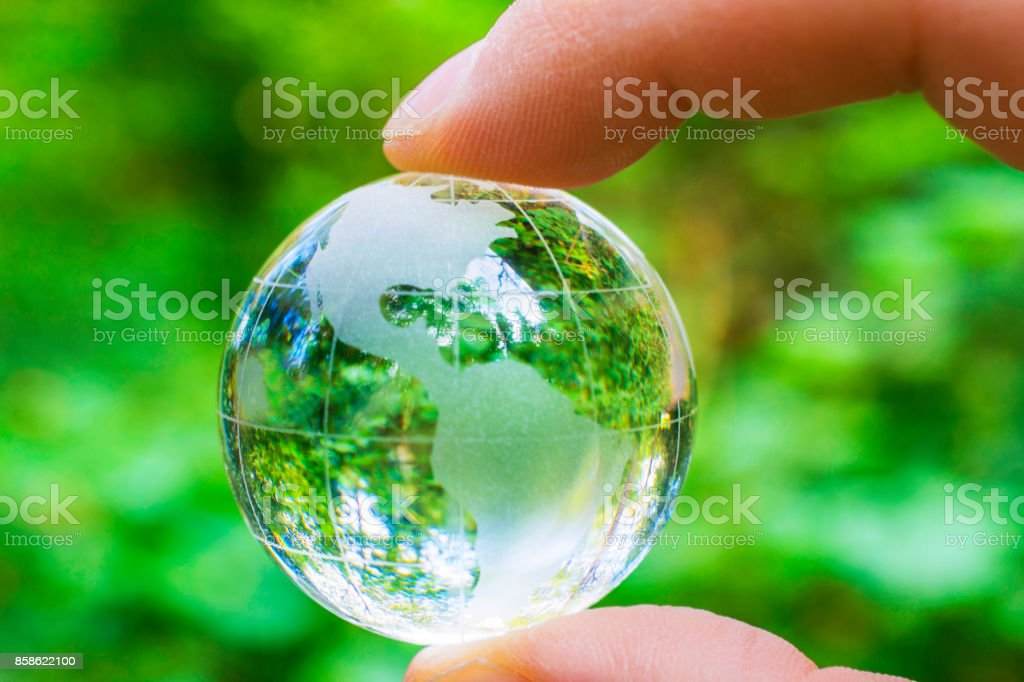 Glass world globe held by a hand in a forest.