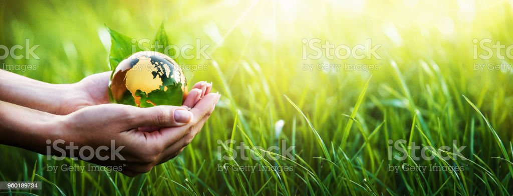 Green Planet in Your Hands. Environment Concept royalty-free stock photo