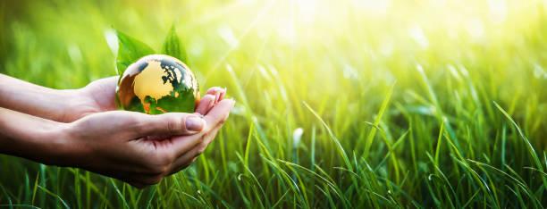 planète verte dans vos mains. environnement concept - recyclage main photos et images de collection