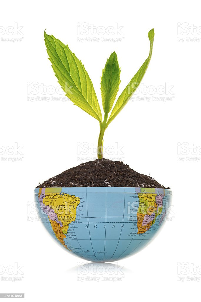 Green plant and Globe royalty-free stock photo
