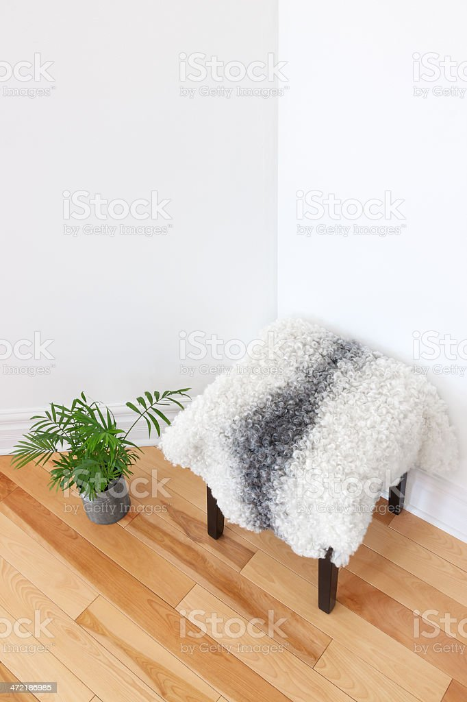 Green plant and stool covered with sheepskin stock photo