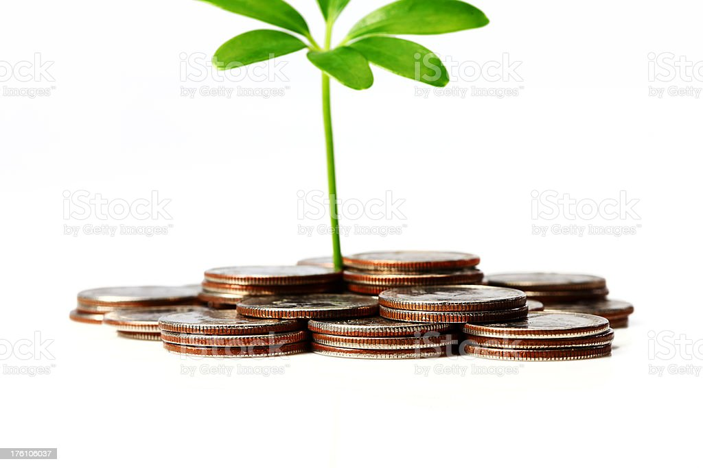 Green Plant Grows From Currency royalty-free stock photo