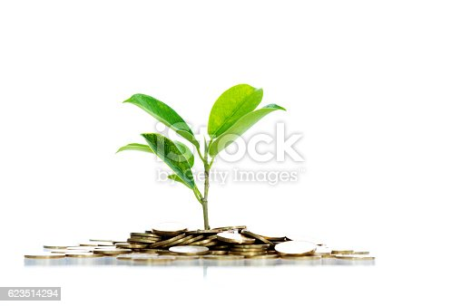 Green plant growth through a stack of coins isolated on white background.