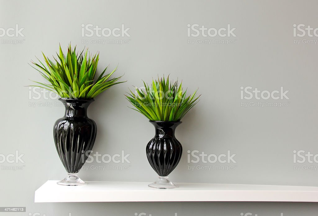 Green plant in vase decorated for room royalty-free stock photo