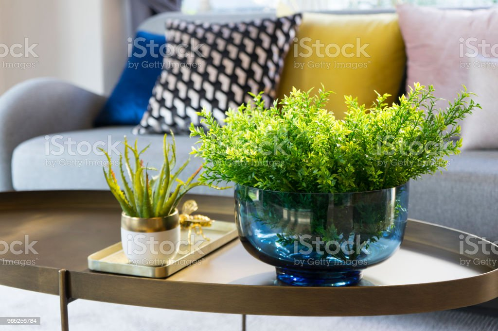 green plant vase on table with gray sofa royalty-free stock photo
