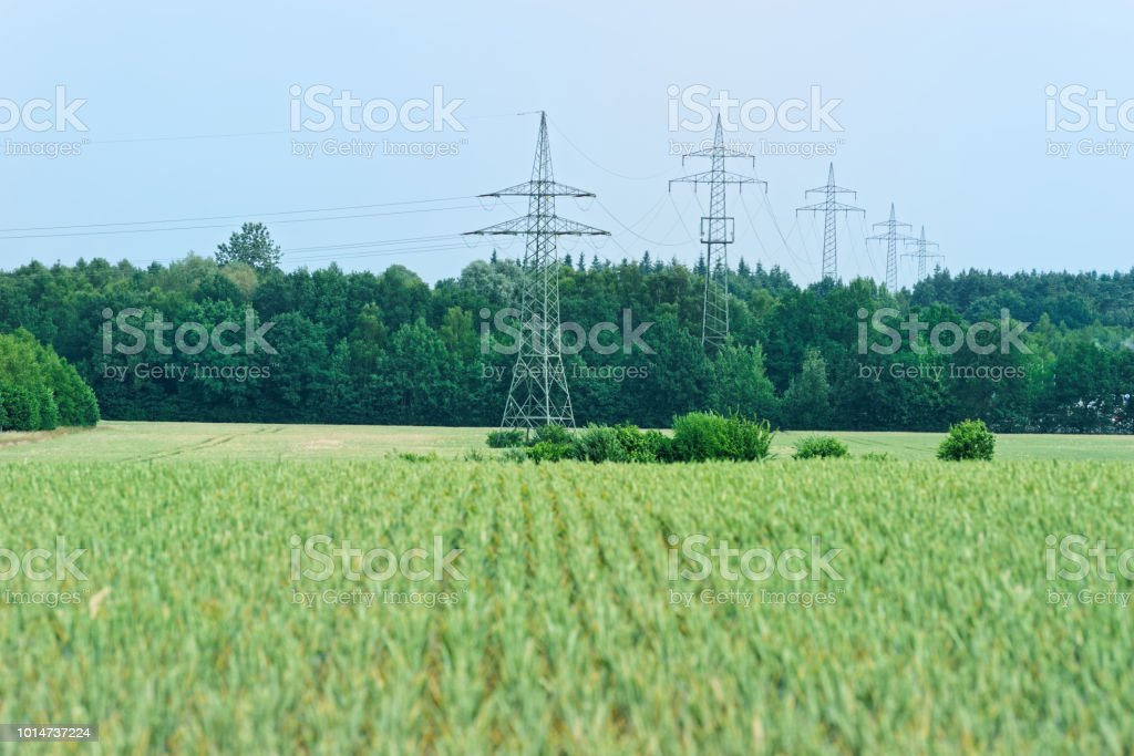 Scenic view of green field of cereal plants and high voltage towers,...