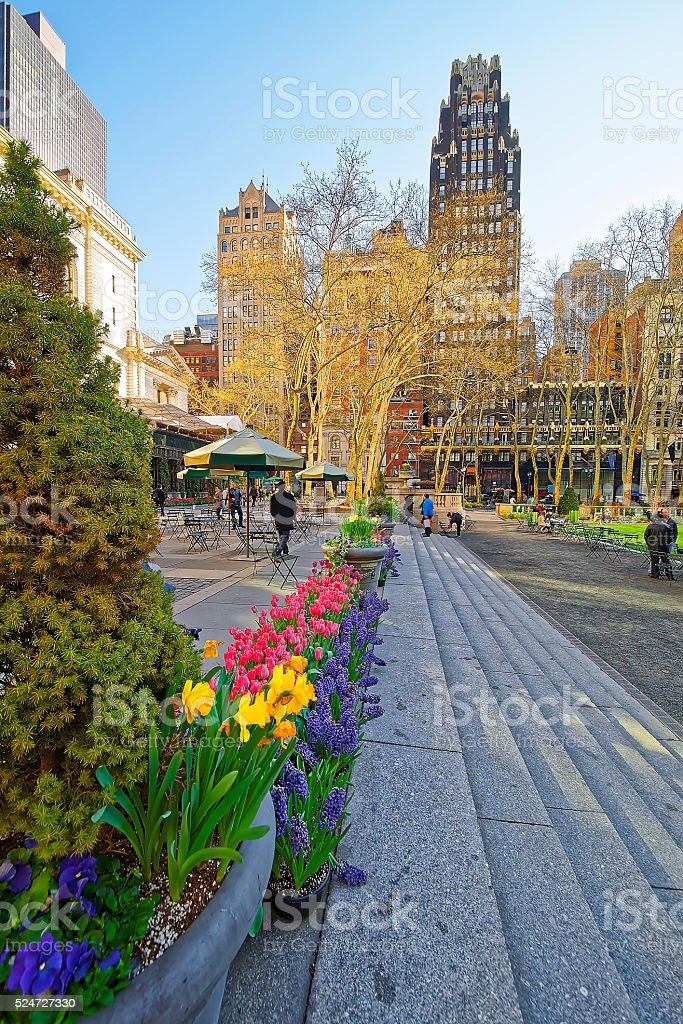 Green plants in blossom and Skyscrapers in Bryant Park stock photo