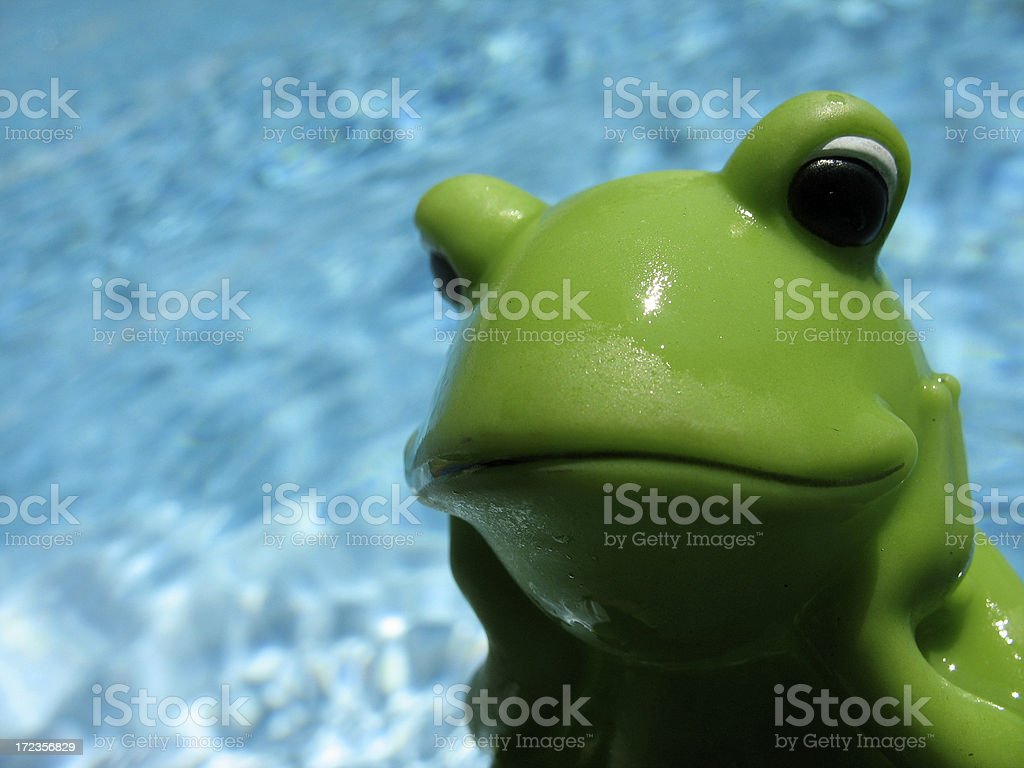 Green plastic froog in a pool sunbathing and swimming royalty-free stock photo