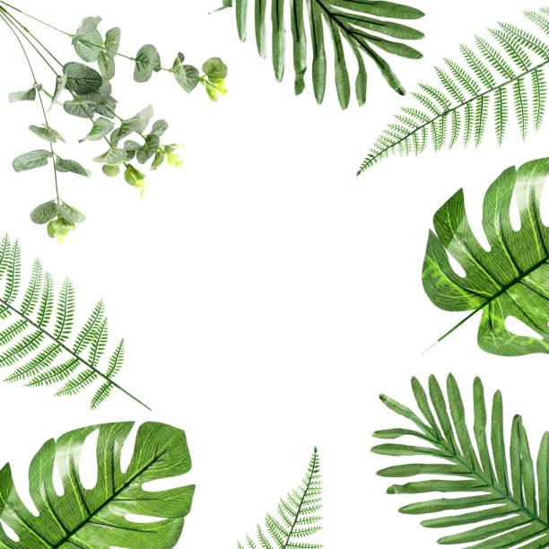 green plastic leaf on white background - jesus and heart zdjęcia i obrazy z banku zdjęć