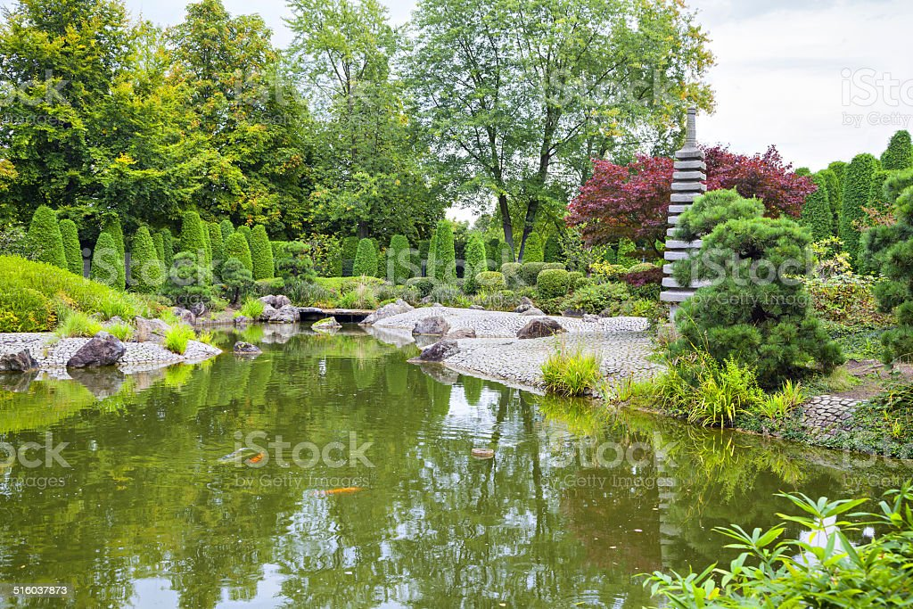 Green pond in Japanese garden in Bonn stock photo