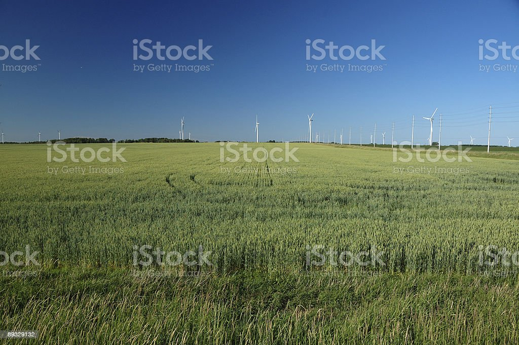 Green power in Ontario landscape stock photo