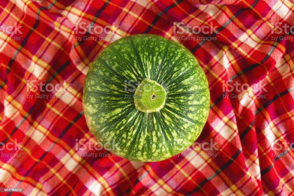 Green pumpkin on a red checkered towel, top view. Autumn still life. royalty-free stock photo