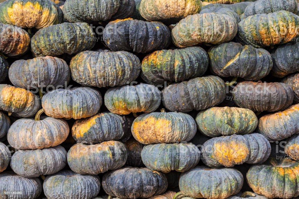 Yeşil kabak sebze tarım piyasasında hasat. Tarım veya çiftlik arka plan. - Royalty-free Altın - Tanımlı renk Stok görsel