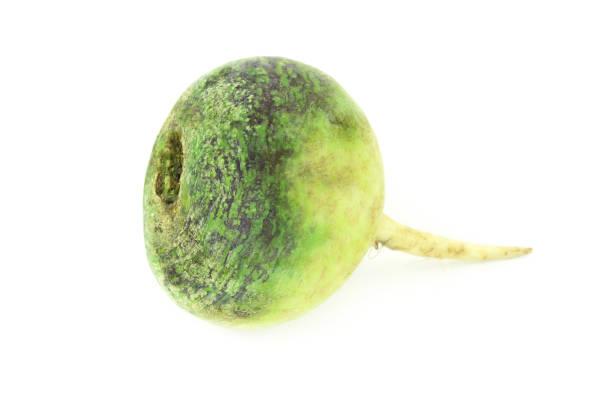 green rettich - birnen rezepte stock-fotos und bilder