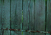 Green Real Wood Texture Background. Vintage and Old.