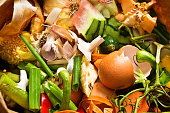 A collection of food waste compost  close-up