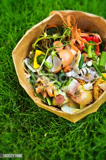 A collection of food waste compost in a biodegradable paper bag. Photographed on a natural grass background.
