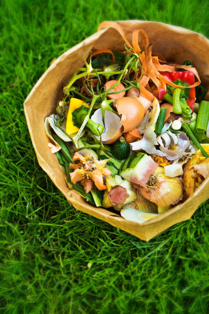 Green Food Waste Kompost auf Grass Hintergrund Recycling – Foto