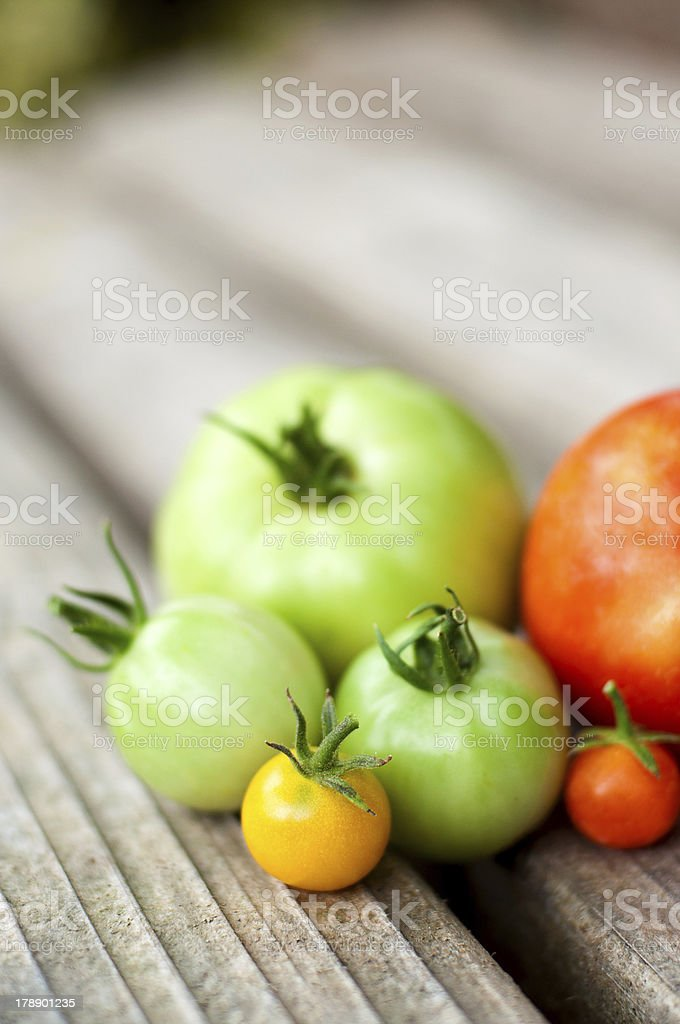 Green, red and yellow tomatoes royalty-free stock photo