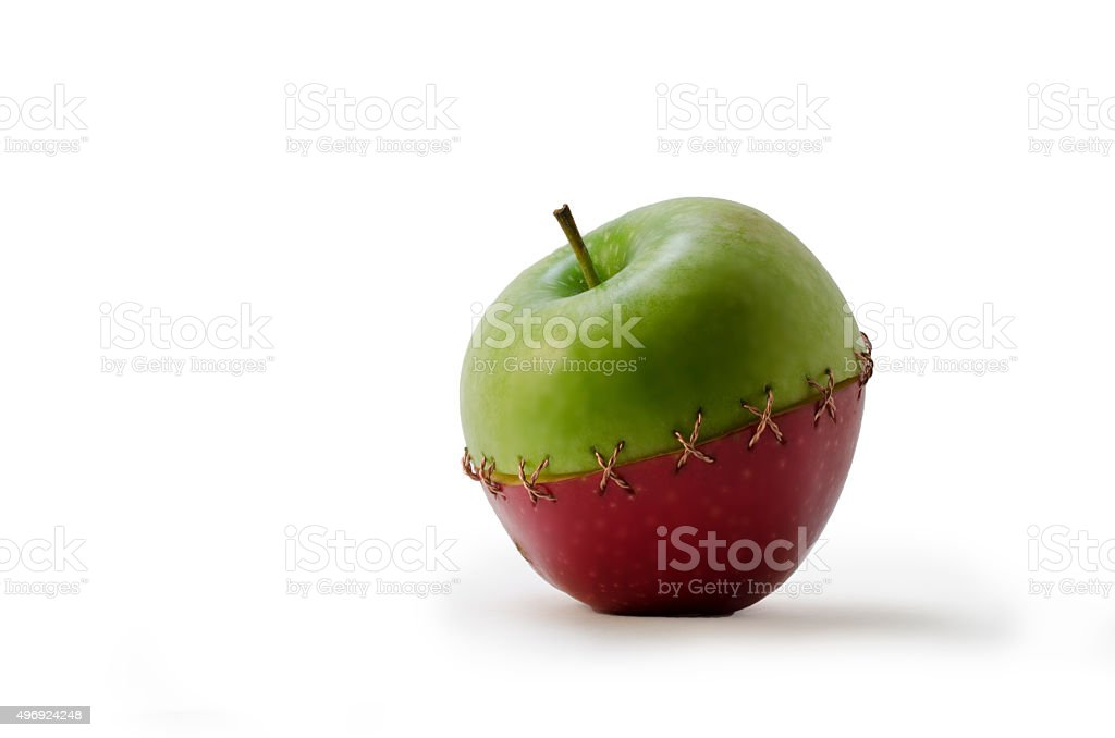 Green Red Stitched Apple The green and red apples stitched with a copper wire 2015 Stock Photo