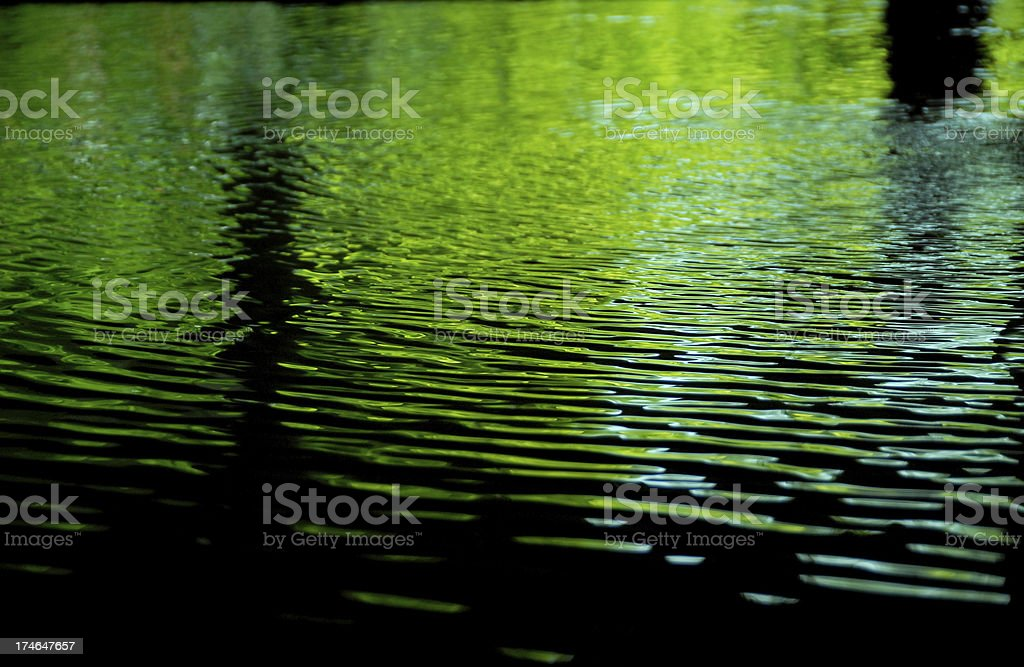 Green Ripples - Landscape royalty-free stock photo