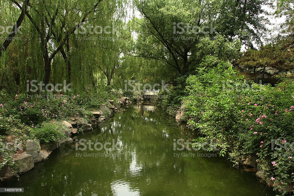 Green River with Flowers royalty-free stock photo
