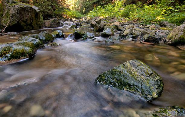 Green Rocks in Flowing Creek stock photo