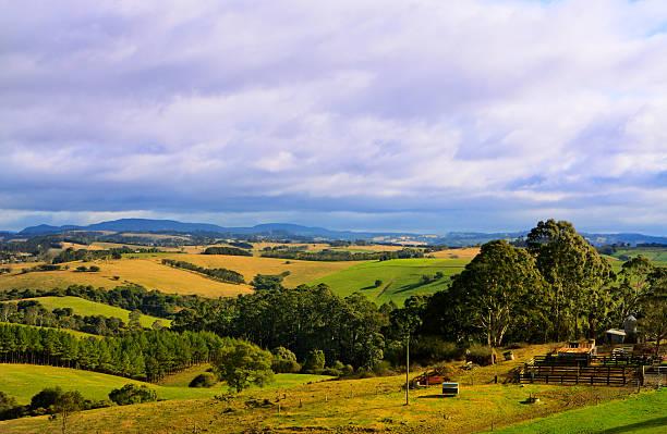Green rolling farmland hills under an overcast cloudy sky stock photo