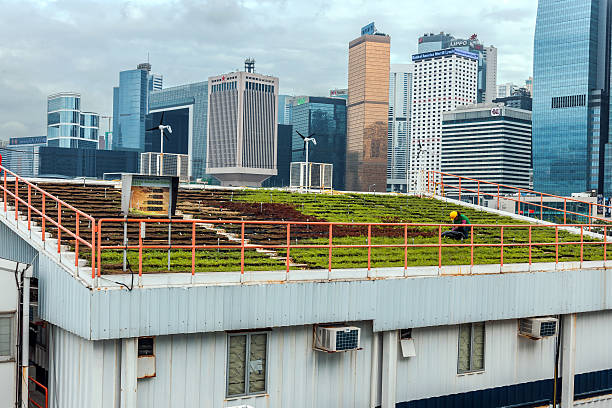 Green Roof and Hong Kong Island Skyline, China, Asia stock photo