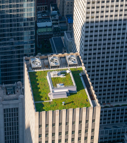 Green roof of a skyscraper stock photo