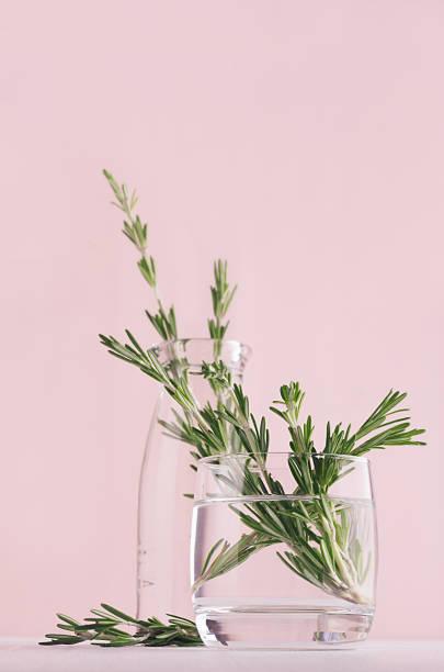 Green rosemary twigs in transparent glass vase on soft pink pastel picture id970820120?b=1&k=6&m=970820120&s=612x612&w=0&h=8tf8dyzk9iqnux0x7pj0awti1wcxfhbruecgz3lzv9s=