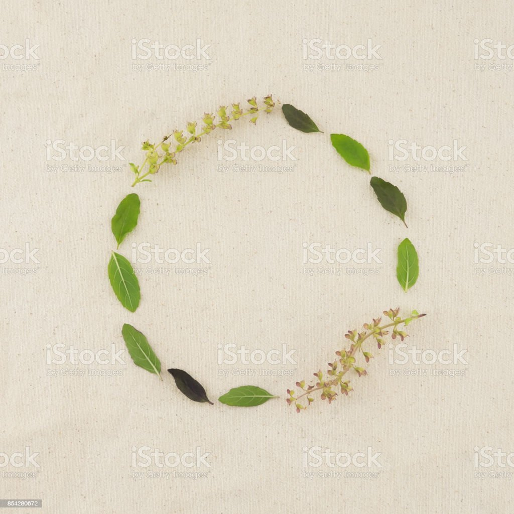 Green round wreath made from basil leaves and flowers stock photo