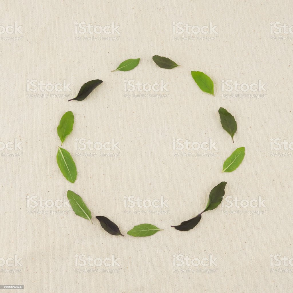 Green round wreath made from basil leaves stock photo