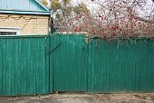 istock green rural wooden fence and closed old door 1204886338
