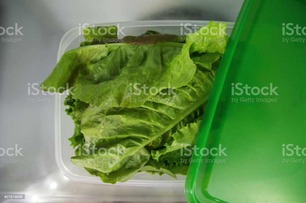Green salad in the plastic food container on a shelf of a fridge. stock photo